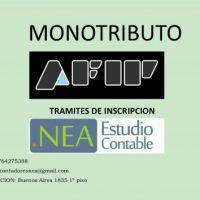 Monotributo - Contador Publico