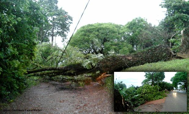 Alerta por tormentas fuertes para Santiago del Estero