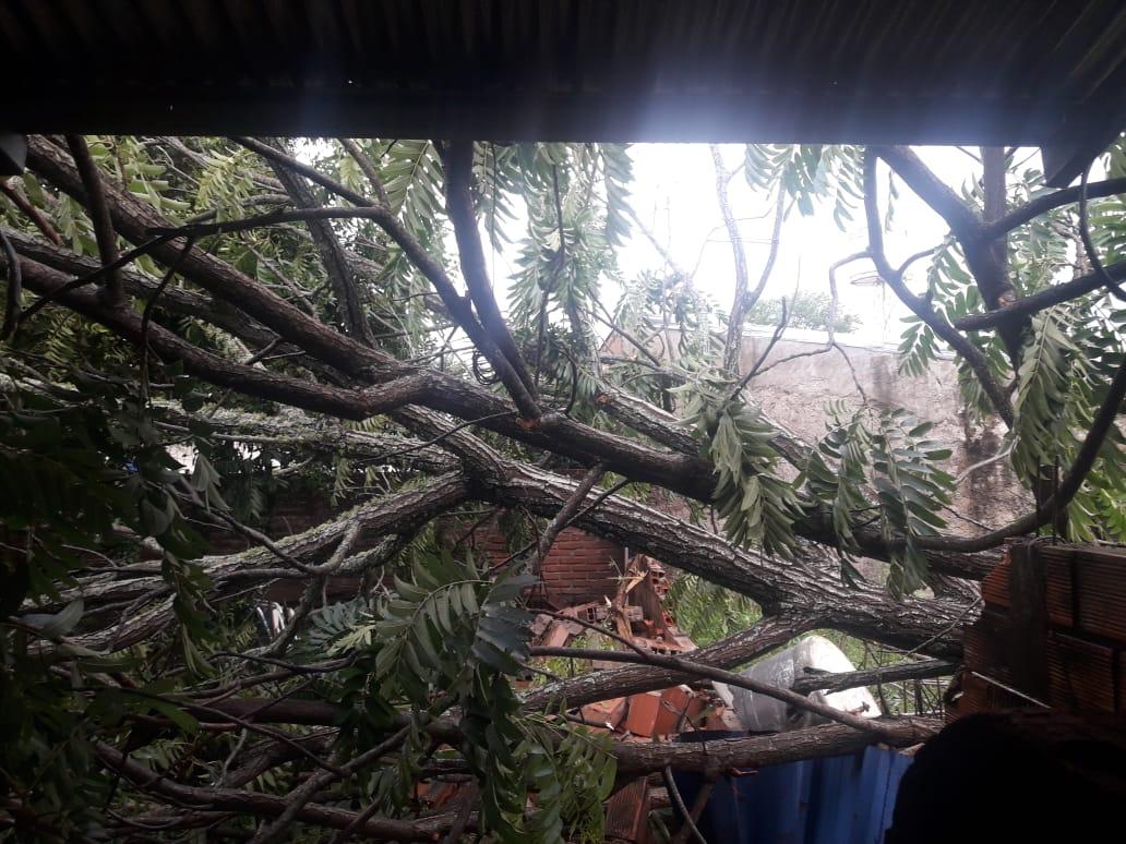 Tormenta de agua y fuertes vientos causó destrozos en Candelaria - Primera Edicion